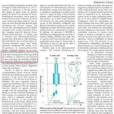 the origin of homo sapiens u0026 timeline of human evolution