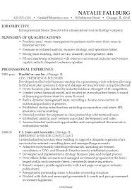 Sample Format Of A Resume by Resume Executive Financial Technology Susan Ireland Resumes