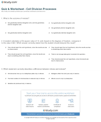 Mitosis And The Cell Cycle Worksheet Quiz Worksheet Cell Division Processes Study Com