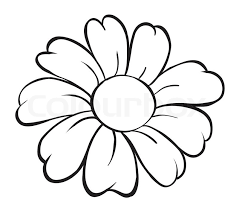 flower sketch stock vector colourbox