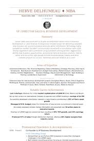 C Level Resume Samples by Vp Business Development Resume Samples Visualcv Resume Samples