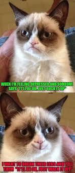 Depressed Cat Meme - grumpy cat smiling imgflip