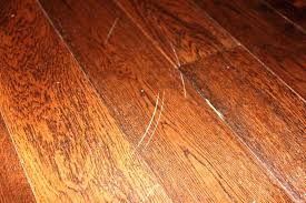 Floor Scratch Repair How To Repair Scratches On Wood Floors Gojiberry Cayi