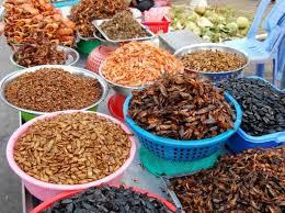 insectes dans la cuisine monde surprenant des insectes au repas
