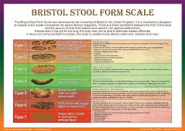 What Does Light Colored Stool Mean Sample Stool Color Chart Assessing Your Dog U0027s For Signs Of