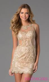 sleeveless lace dress by dave and johnny