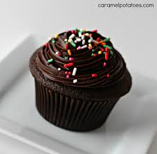 cupcake awesome chocolate cupcake recipe south africa how to