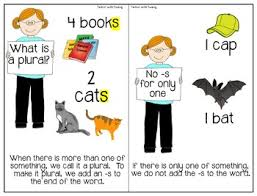 regular plural noun practice interactive book u0026 worksheets tpt