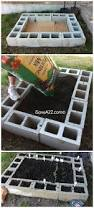 raised bed garden design ideas cinder block garden be sure to