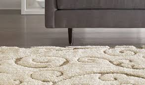 enthrall impression pink plush rug curious orange shag rug beguile full size of rugs sage green rug stunning home decorators rugs this review is from