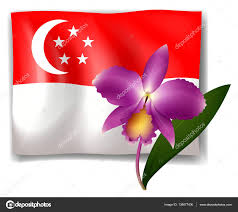 Singapore Flag Icon Purple Orchid And Singapore Flag U2014 Stock Vector Interactimages