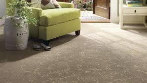 living room what is the best berber carpet for living room