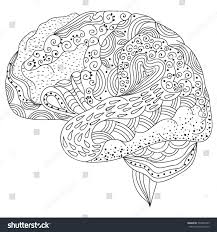 Human Brain Doodle Decorative Curves Creative Stock Vector Brain Coloring Page