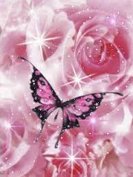 butterflies images roses and butterflies wallpaper and background