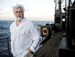 spirit halloween talent reef the sea shepherd u0027s captain paul watson wants to save our oceans by