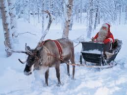 rent a clown nyc reindeer rental ny nyc ct island