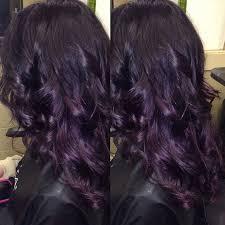 best 25 violet black hair color ideas on pinterest plum hair