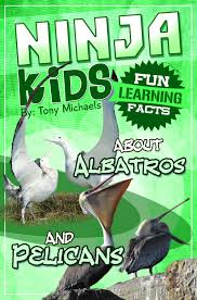 buy fun learning facts about ants and anteaters illustrated fun