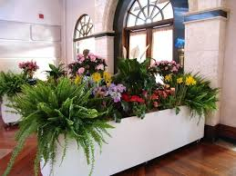 Large Planter Box by Large Rolling Planter Box Rental Floral Rentals Orlando