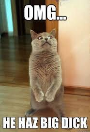 Dick Pic Memes - omg he haz big dick cat meme cat planet cat planet