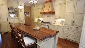 Used Designer Kitchens Designer Luxury Kitchen Design Cannabishealthservice Org