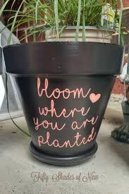 personalized flower pot flower vintage cover design template vector illustration stock