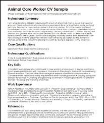 curriculum vitae template leaver jobs animal care worker cv sle myperfectcv