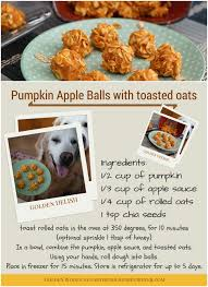 recipe for dog treats pumpkin apple dog treats official release cookingforsugar