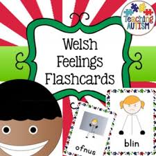 welsh feelings emotions flashcards welsh words welsh and learning