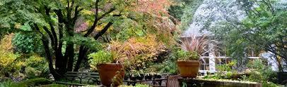 Backyard Botanical Complete Gardening System Gardens