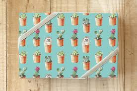 hedgehog wrapping paper hedgehog and cactus wrapping paper wrapping paper