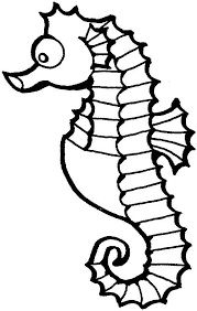 sea horse coloring pages coloring pages free blueoceanreef