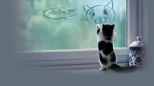 Sad Kitty Meme - cat love wallpapers group 72