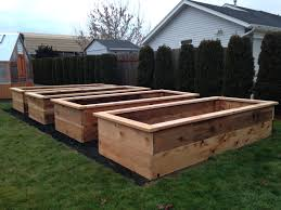 types of raised garden beds gardening ideas