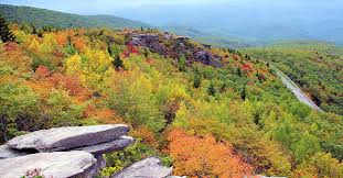 pet friendly leaf peeping blue ridge shenandoah