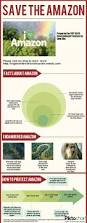 native plants in the amazon rainforest the 25 best amazon rainforest tribes ideas on pinterest amazon