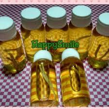 Minyak Bulus Asli Papua jual minyak bulus asli papua ginseng asli agen produk o r g