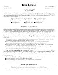 Computer Technician Resume Auto Resume Download Manager Resume For Your Job Application