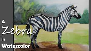 how to paint a zebra in watercolor youtube