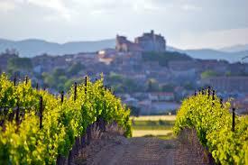 regionale küche weine und regionale küche aus dem languedoc roussillon wine4friends