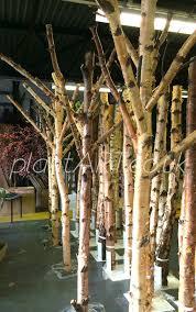 www plantart co uk vm autumn winter artificial