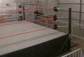 backyard wrestling ring for sale cheap to own a professional wrestling ring wrestling show nnwrestling