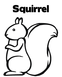 squirrel pictures to print free download clip art free clip