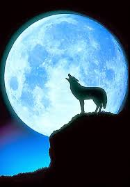 saga s cottage the wolf moon and home protection spell