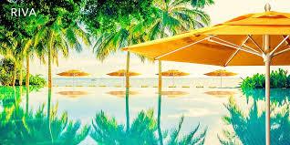 Palm Tree Patio Umbrella Sunbrella Umbrellas And Patio Furniture Outdoor Fabric Central