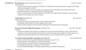 professional resume for graduate sle objective for graduate resume career high student with no