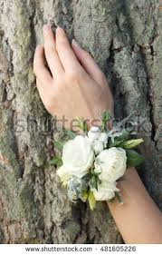 White Wrist Corsage Wrist Corsage Stock Images Royalty Free Images U0026 Vectors