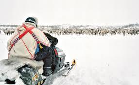 reindeer country modern farmer