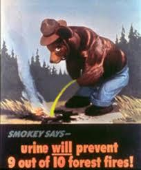 Smokey The Bear Meme Generator - smokey the bear meme 28 images smokey the bear says meme