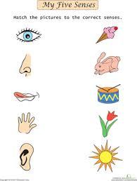 body parts preschool worksheets thema het lichaam hygiëne
